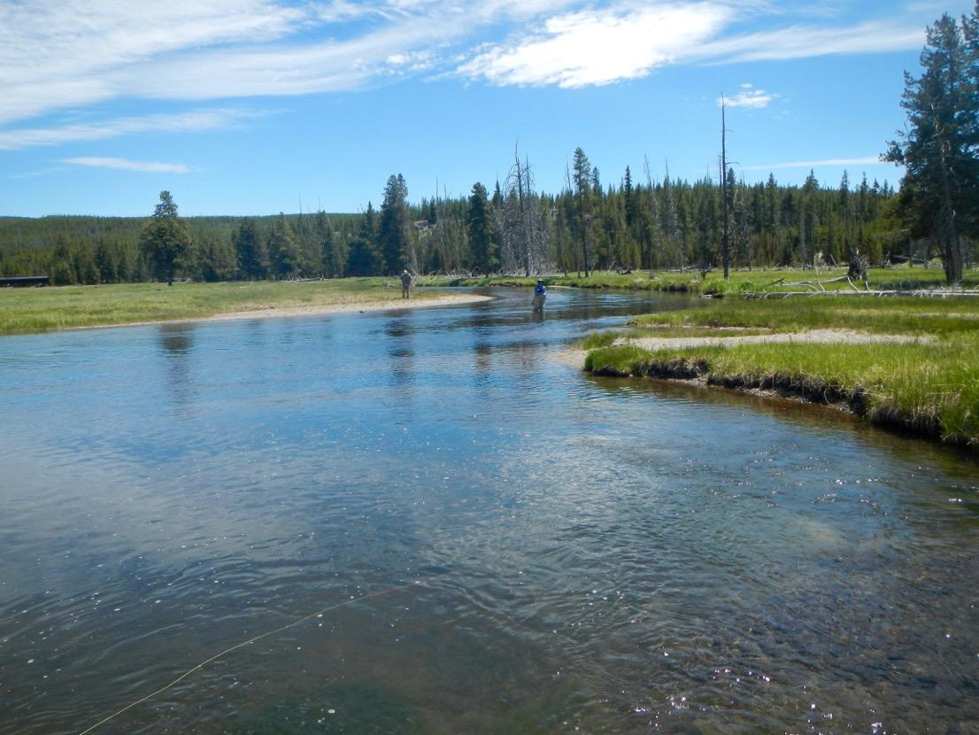 Gibbon River Yellowstone National Park